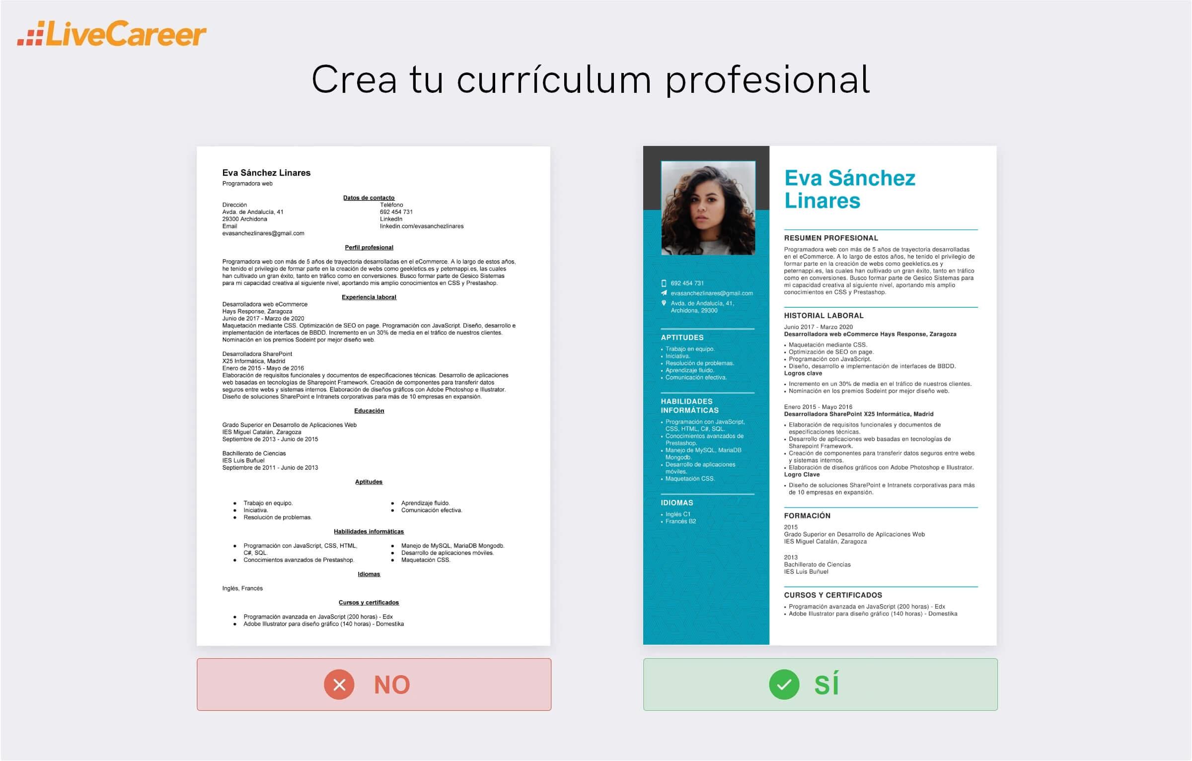 Currículum de Programador