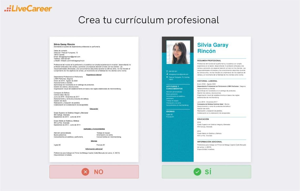 currículum a Primor